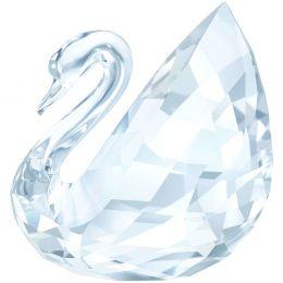 Swan, Large
